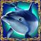 dolphindeluxe